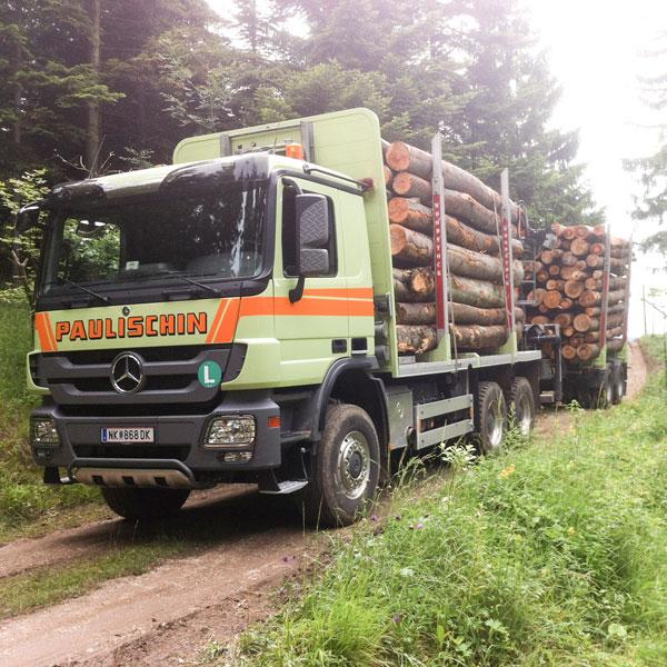 Holzrungenfahrzeug
